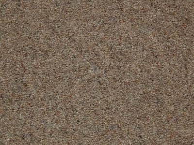 Tomkinson Berber -Chestnut